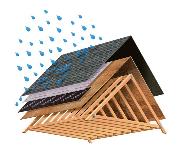 1-roof rain